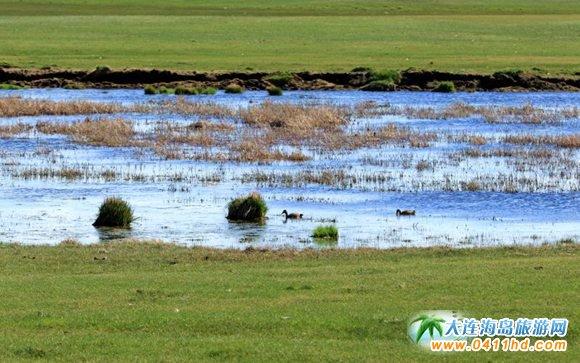 乌拉盖草原在哪里,大连到乌拉盖草原旅游攻略,乌拉盖自驾游