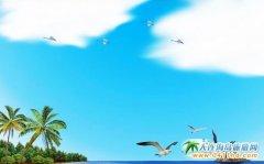 大连到海南旅游,独享岛中岛6日游