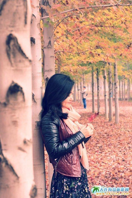 三十里堡枫叶林