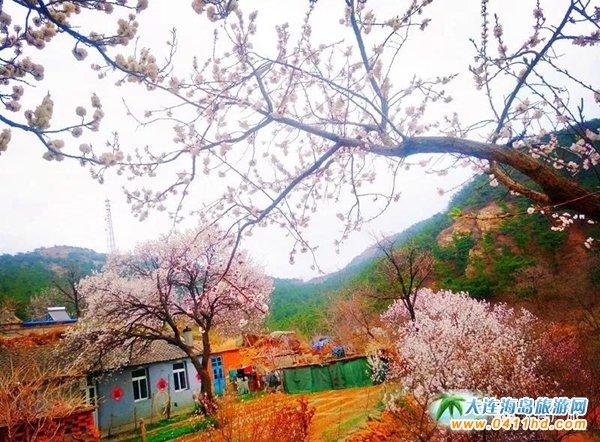 广鹿岛度假村