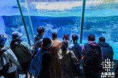 清明节大连旅游景点3天接待游客64.03万,累计收入8.94亿元
