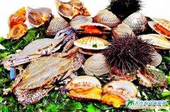 长海味道丨吃遍五大海岛八大碗之 红烧珍珠鲍